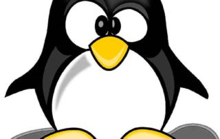 Google Update Penguin